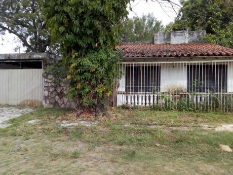 Vendo Dos Terrenos Juntos Sup. 1350 M2 Barrio Felicidad Lambaré