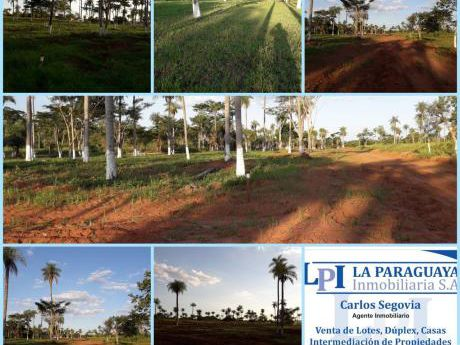 Vendo Hermoso Terreno En Itagua