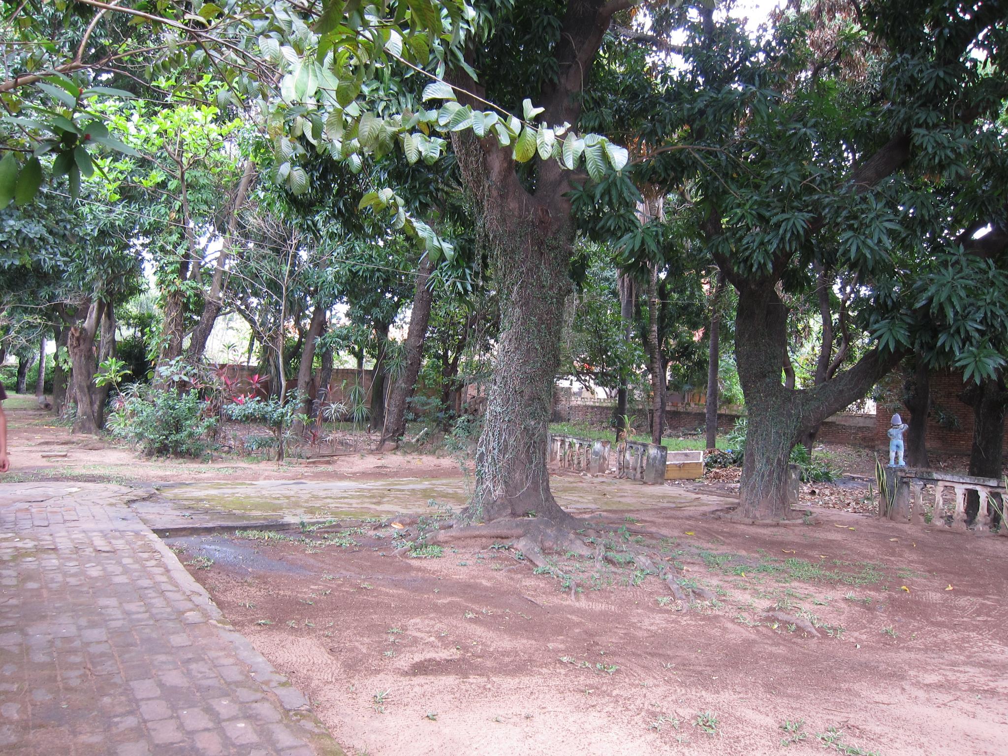Vendo Propiedad 2.400 M2 Con Casa Antigua En Centro De Luque