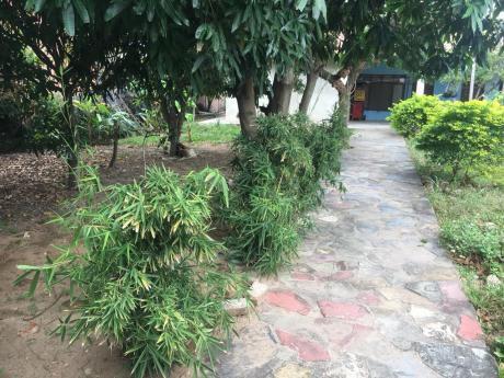«casa En Venta En El Quior Cerca Al Mercado Guapurú»