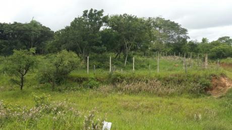 Terreno En Venta, En Zona Industrial 5 Hectareas
