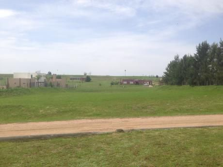 Terreno En Colinas De Carrasco