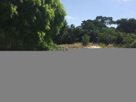 Alquiler Terreno Pinar Sur Nivelado Y Cercado