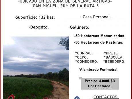Vendo 132 Has En San Pedro Del Parana!!