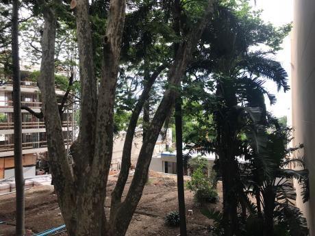 Alameda Del Prado