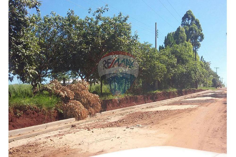 Vendo Terreno De 1 Ha. Y Media En San Juan Del Parana