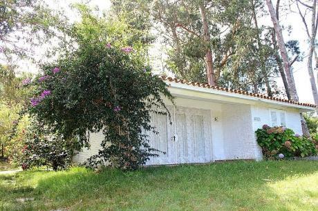 Casa Principal Y Casa De Huéspedes En San Rafael.