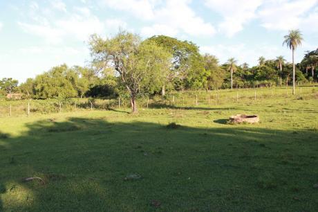 Oferta Imperdible Vendo Terreno Nueva Ruta Luque Sanber