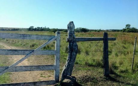 Campo De 1178 Hectares En Naranjal
