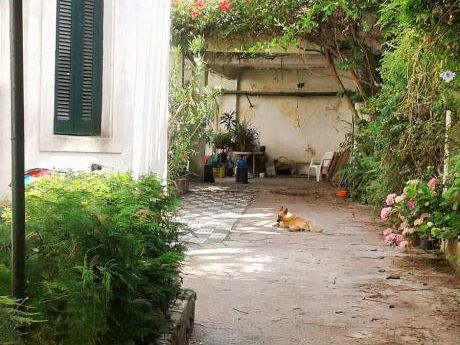 En El Corazón Del Prado, Casa De Estilo, A Reciclar