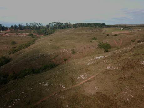 Campo A La Venta 5 Hás Ruta 60 Km 45