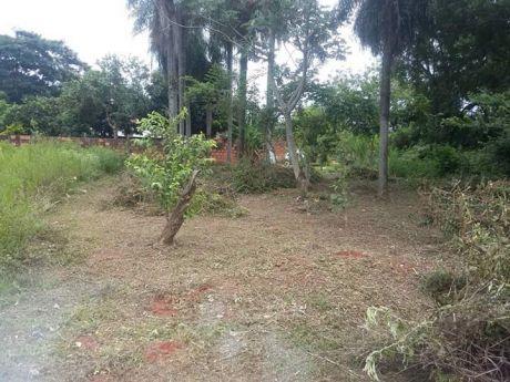 Vendo Terreno En Isla Bogado Luque Zona Escuela CaÑada San Rafael