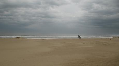 Terreno En Punta Rubia T3212
