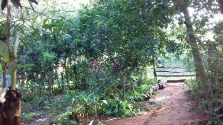Vendo Terreno En ñemby