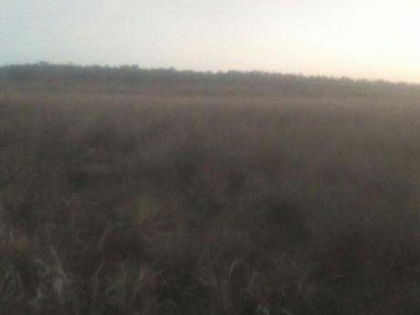 Vendo Terreno De 62 Hectáreas Ruta 13 Zona Yhu Caaguazu!!