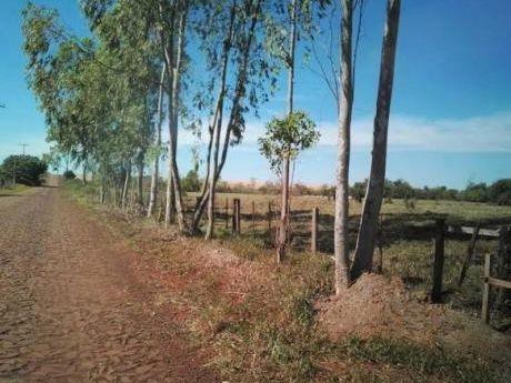 Se Vende Propiedad De 8.719 M2. En El Distrito Santa Rita (dpto. Alto Paraná)