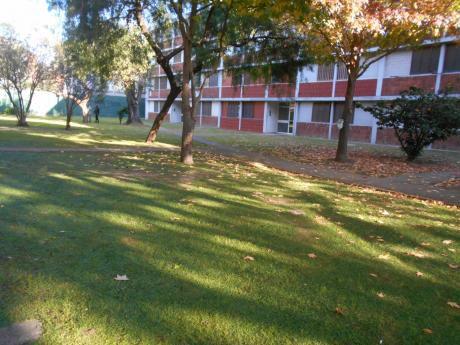 Frente A Antel Arena. Complejo Cercado. Alquiler 3 Dormitorios Brazo Oriental.