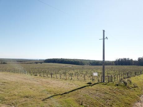 Campo De 17 Hectáreas Sobre Ruta 8 Km 103