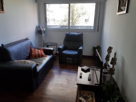 Alquiler Apartamento 1 Dormitorio Con Muebles Punta Carretas