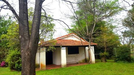 Casa 2 Dormitorios Y Apto Dos Ambientes Próxima Al Bus Y Centro