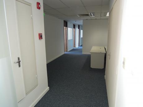 Alquilo Oficina De 215 M2 Zona Paseo La Galería