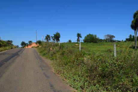 56hectareas De Terreno En El Urubo Sobre Carretera Asfaltada