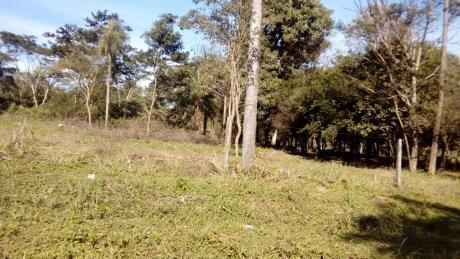 Vendo Hermoso Terreno En Ñemby