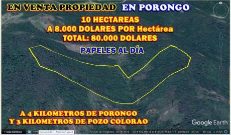 En Venta Propiedad De 10 Hectáreas En Porongo (8.000 $us X Ha)