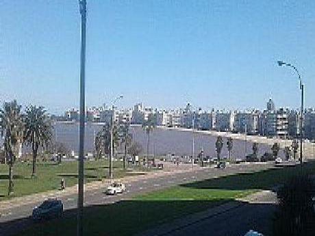 Venta Apartamento Con Renta En Rambla Prox. Luis Alberto De Herrera