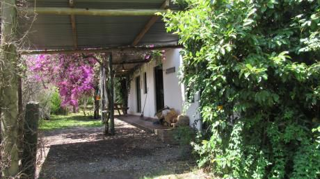 Casa Con Privilegiado JardÍn, En Calle VillamajÓ