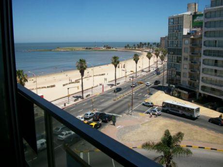Alquiler De Apartamento Frente Al Mar!!,