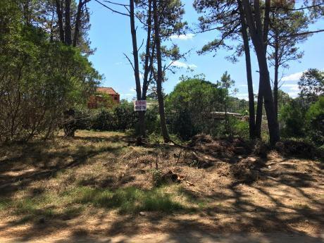 La Paloma, La Serena Terreno De 503 M2