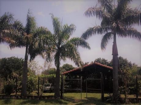 Se Vende Casa Quinta De 3.240 M2. En Ñemby