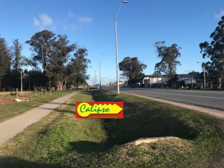 Sobre Ruta 11- Terreno De 680 M2 - Inmobiliaria Calipso