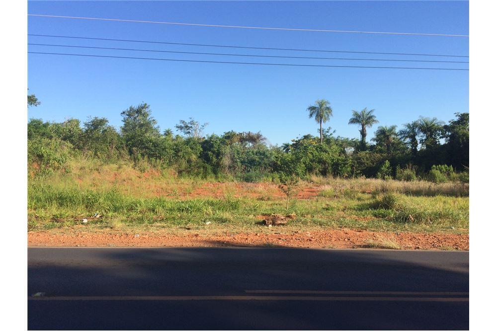 TERRENO: Terrenos Sobre Avenida, Ruta Luque Limpio en Luque
