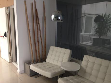 Alquiler Apartamento 2 Dormitorios C/patio Y Gge