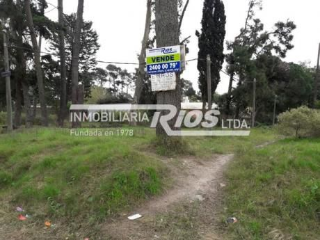 Terreno En Pinar Norte