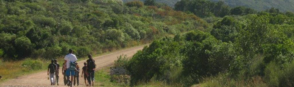 Cerro de los Burros