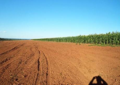 Caaguazu 2500 Agricola, Ganadera Y Forestal