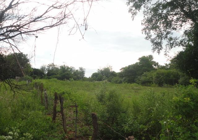 Terreno En Altos, De 4,12 Ha,con Vista Al Lago, Sobre El Camino A Tukangua