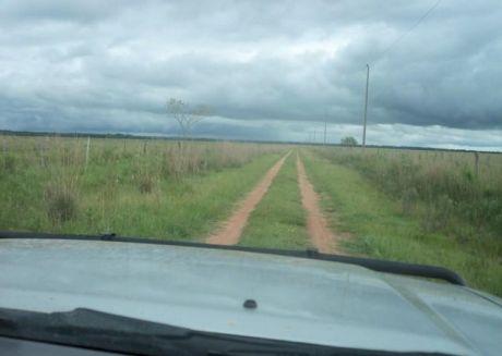 Vendo En Paraguari Sobre Ruta Asfaltada 500 Has De Terreno