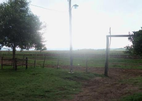 Vendo En Paraguari Terreno 700 Has De Campo Alto