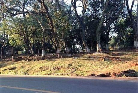 Oferto 3 Terrenos Sobre Asfalto!!, Juntos O Separados En Luque - Cañada San Rafael, Sobre Asfalto, Zona Ips
