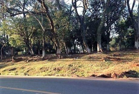 Oferto!! últimos Terrenos Sobre Asfalto A Pasos Del Centro De Luque, Zona Ips!
