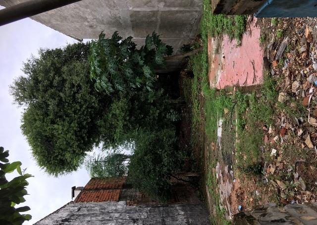 Terreno Sobre Asfalto En Sajonia 9 X 30