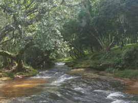 Hermosos Lotes En Caacupe - Arroyo Ytu