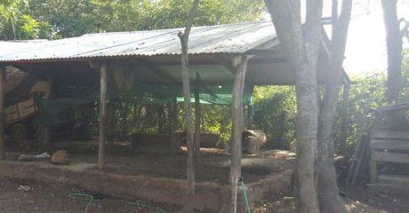 En Venta Propiedad Rural En Luque