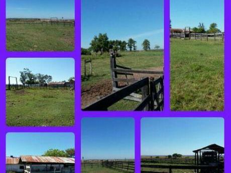 Vendo Estancia A 120 Km- De Asuncion