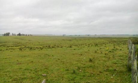 Campo / Chacra En Venta En Retamosa, Lavalleja