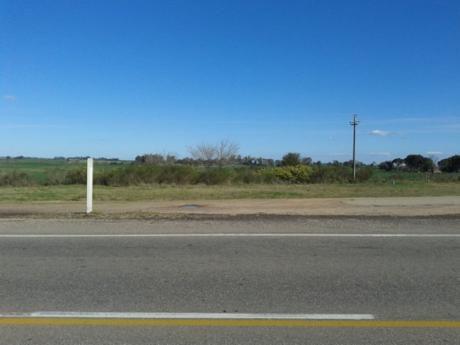 Campo / Chacra En Alquiler En Mercedes, Soriano